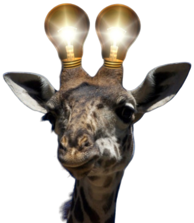 https://naturopathie-edith.fr/wp-content/uploads/2019/12/girafe-removebg-preview-640x734.png